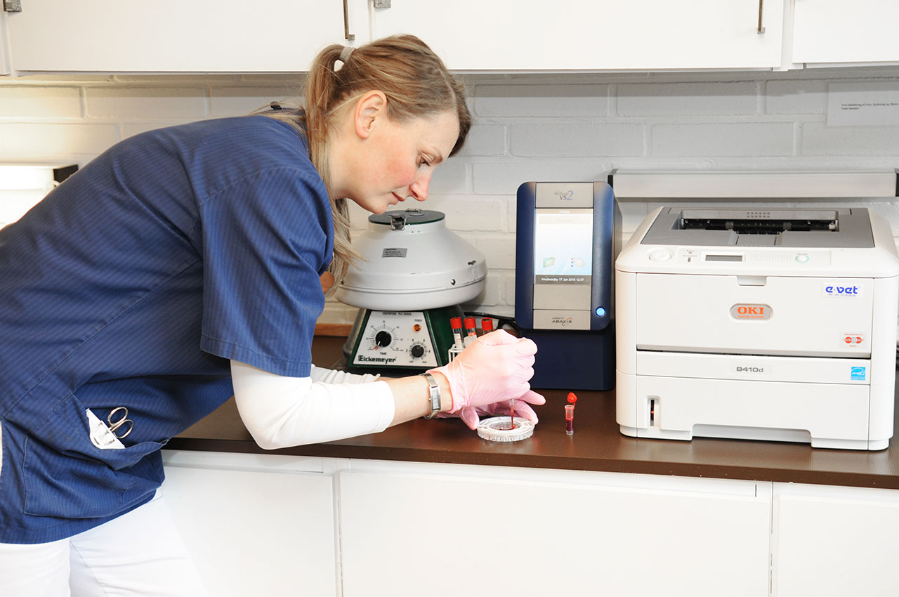 Laboratorium på Haderslev Dyrehospital
